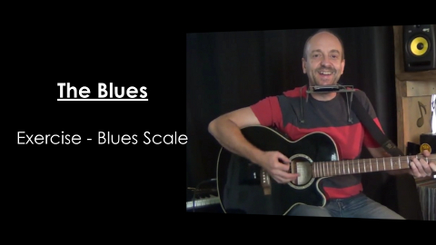 The Blues on Guitar and Harmonica Video Series