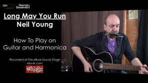 Neil Young - Long May You Run - D Harp