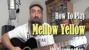 Mellow Yellow Lesson on Harmonica and Guitar